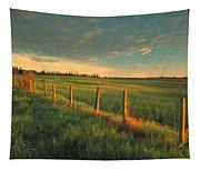 Pasture Sunrise Tapestry