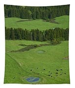 Pastures In Azores Islands Tapestry