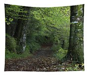 Path Through The Woods Inistioge Tapestry