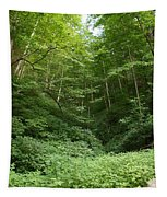 Peaceful Forest Tapestry