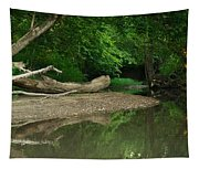 Peaceful Stream Tapestry