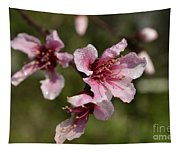 Peach Blossom Clusters Tapestry