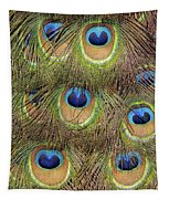 Peacock Feather Eyes Tapestry