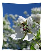 Pear In Bloom Tapestry