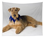 Pedigree Dog Tapestry