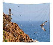 Pelicans Off The Point Tapestry