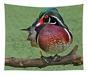 Perched Wood Duck Tapestry
