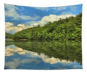 Perfect Reflections Tapestry