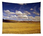 Peruvian High Plains 2 Tapestry