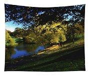 Phoenix Park, Dublin, Co Dublin, Ireland Tapestry