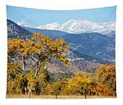 Picture Perfect Tapestry