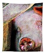 Pig Sleeping Tapestry