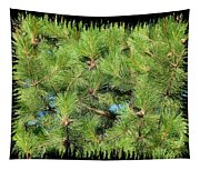 Pine Cones And Needles Tapestry