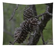 Pine Cones Tapestry