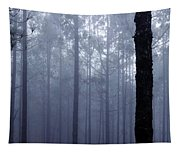 Pine Trees In Cloud In The Forest Corona Tapestry