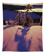 Pink And Purple Sunrise Shadows Of Snow Tapestry