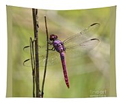 Pink Dragonfly With Sparkly Wings Tapestry