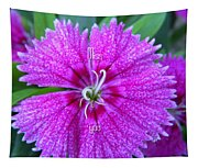 Pink Flower Miss You Tapestry
