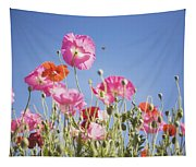 Pink Flowers Against Blue Sky Tapestry