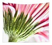 Pink Gerbera 9 Tapestry