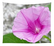 Pink Morning Glory Flower Tapestry