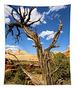 Pinwheel Tree Tapestry
