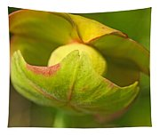 Pitcher Plant Flower Tapestry