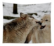 Playful Wolves Tapestry