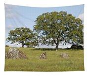 Pleasant Hillside Tapestry