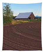 Plow Designs And A Barn Tapestry