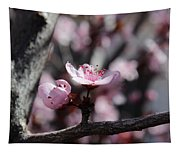 Plum Blossoms 9 Tapestry
