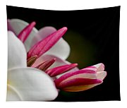 Plumeria In The Wind Tapestry
