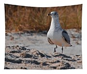 Poised Seagull Tapestry