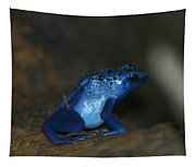 Poisonous Blue Frog 03 Tapestry
