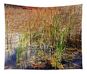 Pond And Rushes Tapestry