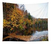 Pond On Limekiln Road II Tapestry