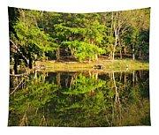 Pond Reflection Guatemala Tapestry