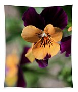 Prettiest Pansy Tapestry