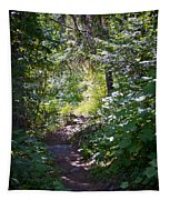 Priest Lake Trail Series IIi - Trail Shadows Tapestry