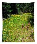 Priest Lake Trail Series Iv - Small Meadow Tapestry