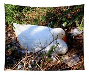 Protecting Her Eggs Tapestry