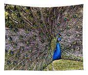 Proud Peacock At Leeds Castle Tapestry