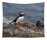 Puffin With Sand Eels Tapestry