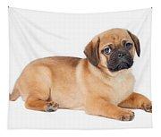 Pug Dog Tapestry