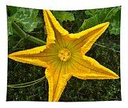Pumpkin Flower 1 Tapestry