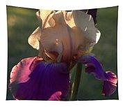 Purple And White Iris Tapestry