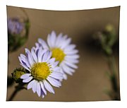 Purple Aster Tapestry