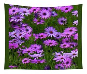 Purple Daisies Square Tapestry
