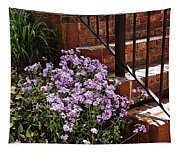 Purple Phlox  Tapestry