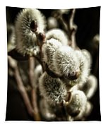Pussy Willow Tapestry